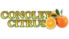 Conoley Citrus